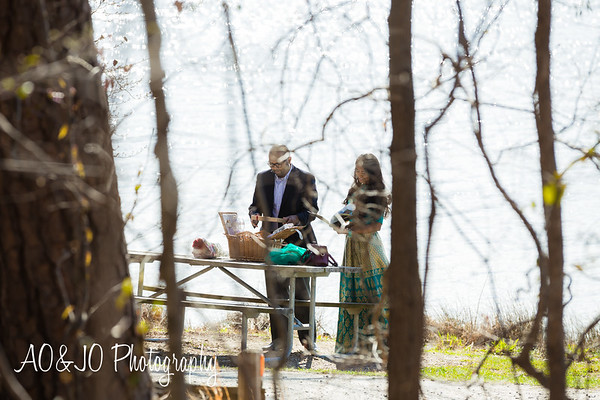 Hiren & Bhumi's Engagement Session :: Lake Cratree Park :: AO&JO Photography
