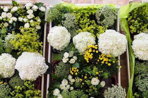Blumen Blumen Blumen