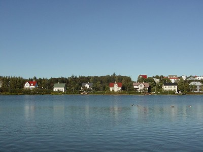 A lake in central Reykjavik. The houses around it were certainly beautiful (and expensive no doubt).