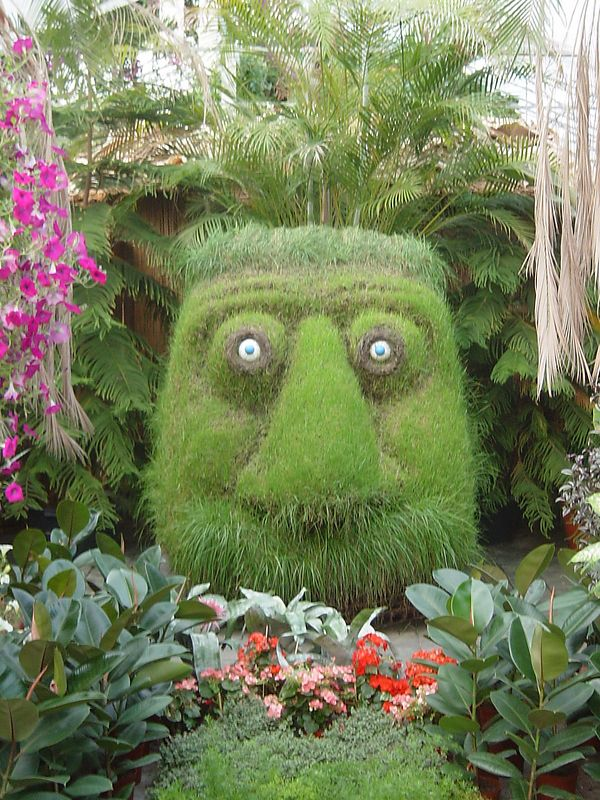 The warm an actual green house with hot spring water and grow bananas, flowers and funny face grasses.