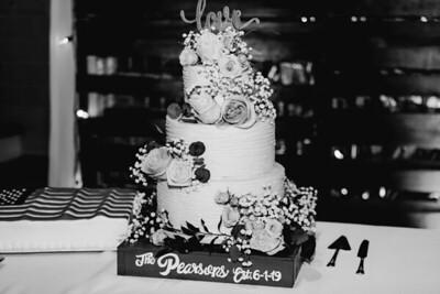 07314-©ADHPhotography2019--IanJameePearson--Wedding--June01