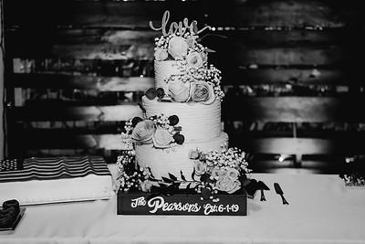 07316-©ADHPhotography2019--IanJameePearson--Wedding--June01