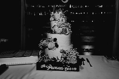 07292-©ADHPhotography2019--IanJameePearson--Wedding--June01