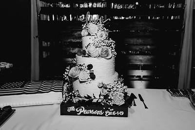 07294-©ADHPhotography2019--IanJameePearson--Wedding--June01