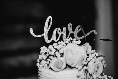 07300-©ADHPhotography2019--IanJameePearson--Wedding--June01