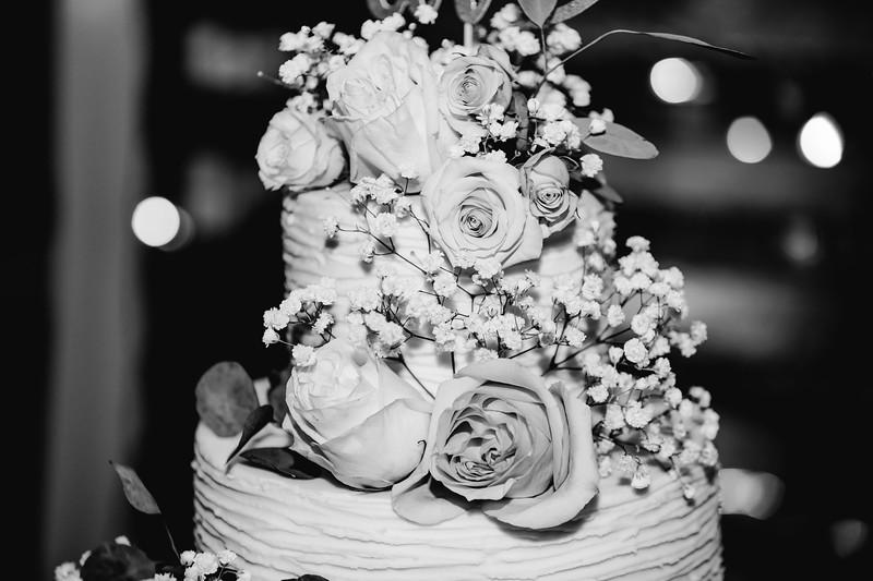 07310-©ADHPhotography2019--IanJameePearson--Wedding--June01