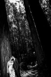 0964_d800a_Molly_and_Zak_Monarch_Cove_Capitola_Wedding_Photography