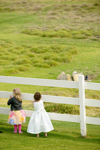2412_d800b_Sarah_and_Brian_Mission_Ranch_Carmel_Wedding_Photography