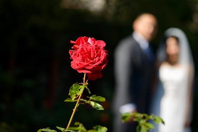 6443_d800_Kim_and_John_La_Mirada_Museum_of_Art_Monterey_Wedding_Photography