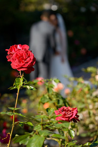 6432_d800_Kim_and_John_La_Mirada_Museum_of_Art_Monterey_Wedding_Photography