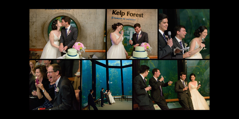 Monterey_Bay_Aquarium_Wedding_Photos_-_Monterey_-_Jamie_and_Jake_37