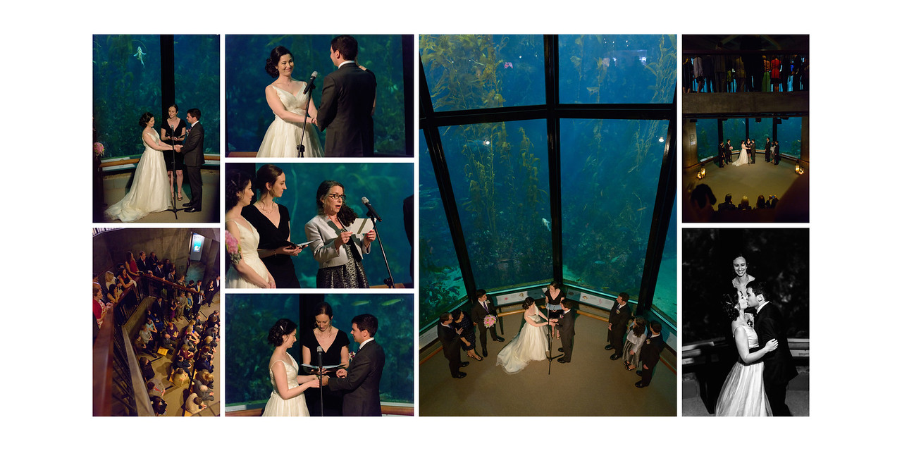 Monterey_Bay_Aquarium_Wedding_Photos_-_Monterey_-_Jamie_and_Jake_30