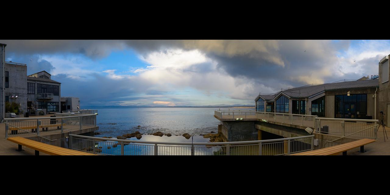 Monterey_Bay_Aquarium_Wedding_Photos_-_Monterey_-_Jamie_and_Jake_20