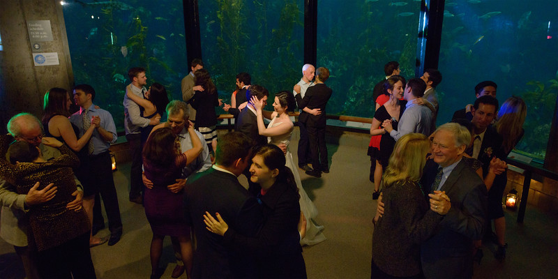 Monterey_Bay_Aquarium_Wedding_Photos_-_Monterey_-_Jamie_and_Jake_40