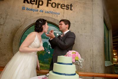 9829_d800b_Jamie_and_Jake_Monterey_Bay_Aquarium_Wedding_Photography
