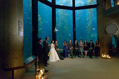 9756_d800b_Jamie_and_Jake_Monterey_Bay_Aquarium_Wedding_Photography