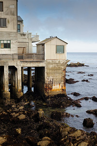 6784_d3_Kirsten_and_Bob_Monterey_Bay_Aquarium_Wedding_Photography