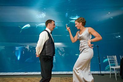 2633_d800_Kirsten_and_Bob_Monterey_Bay_Aquarium_Wedding_Photography