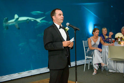 2597_d800_Kirsten_and_Bob_Monterey_Bay_Aquarium_Wedding_Photography