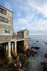1613_d800_Kirsten_and_Bob_Monterey_Bay_Aquarium_Wedding_Photography