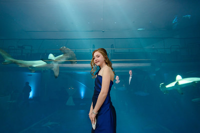 2508_d800_Kirsten_and_Bob_Monterey_Bay_Aquarium_Wedding_Photography