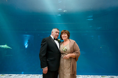 2534_d800_Kirsten_and_Bob_Monterey_Bay_Aquarium_Wedding_Photography