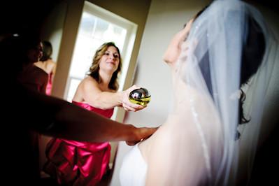 7282-d700_Chris_and_Parisa_San_Jose_Wedding_Photography