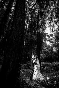 7613_d800_pamela and william wedding_wagners grove harvey west park santa cruz