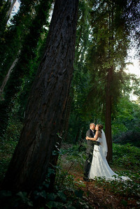 7616_d800_pamela and william wedding_wagners grove harvey west park santa cruz
