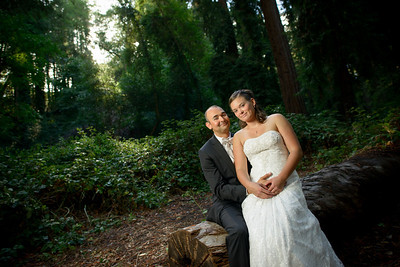 7632_d800_pamela and william wedding_wagners grove harvey west park santa cruz