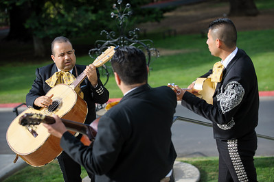 0453-d700_Marianne_and_Rick_Villa_Montalvo_Saratoga_Wedding_Photography