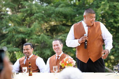 0569-d700_Marianne_and_Rick_Villa_Montalvo_Saratoga_Wedding_Photography