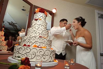 1330-d700_Christine_and_Joe_Scotts_Valley_Hilton_Wedding_Photography