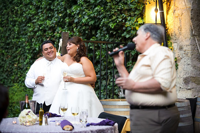 9065-d700_Christina_and_Miguel_Sonoma_Wedding_Photography