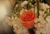 Indian Hills Bridal Show - 0001