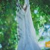 JT+Gloria ~ Wedding_009