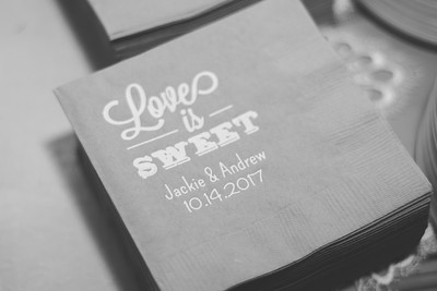 AJR_Wedding_2017-7