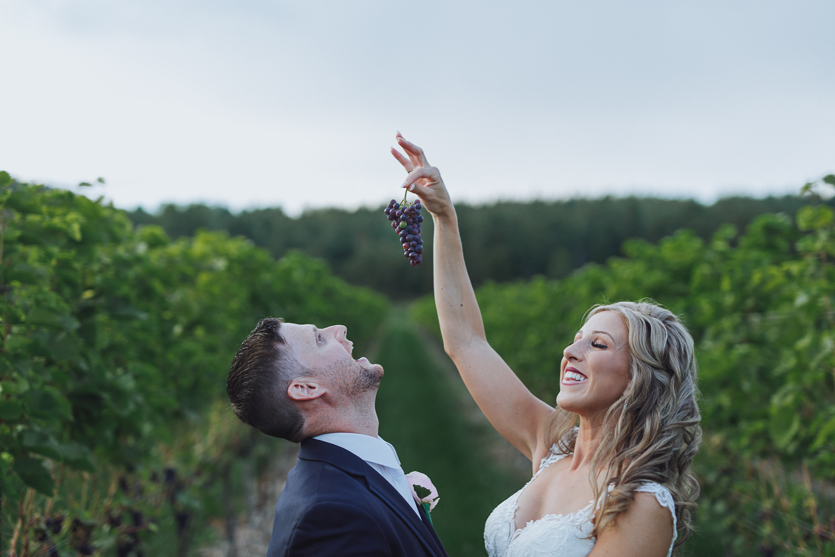 Having fun with grapes - New Brunswick winery wedding