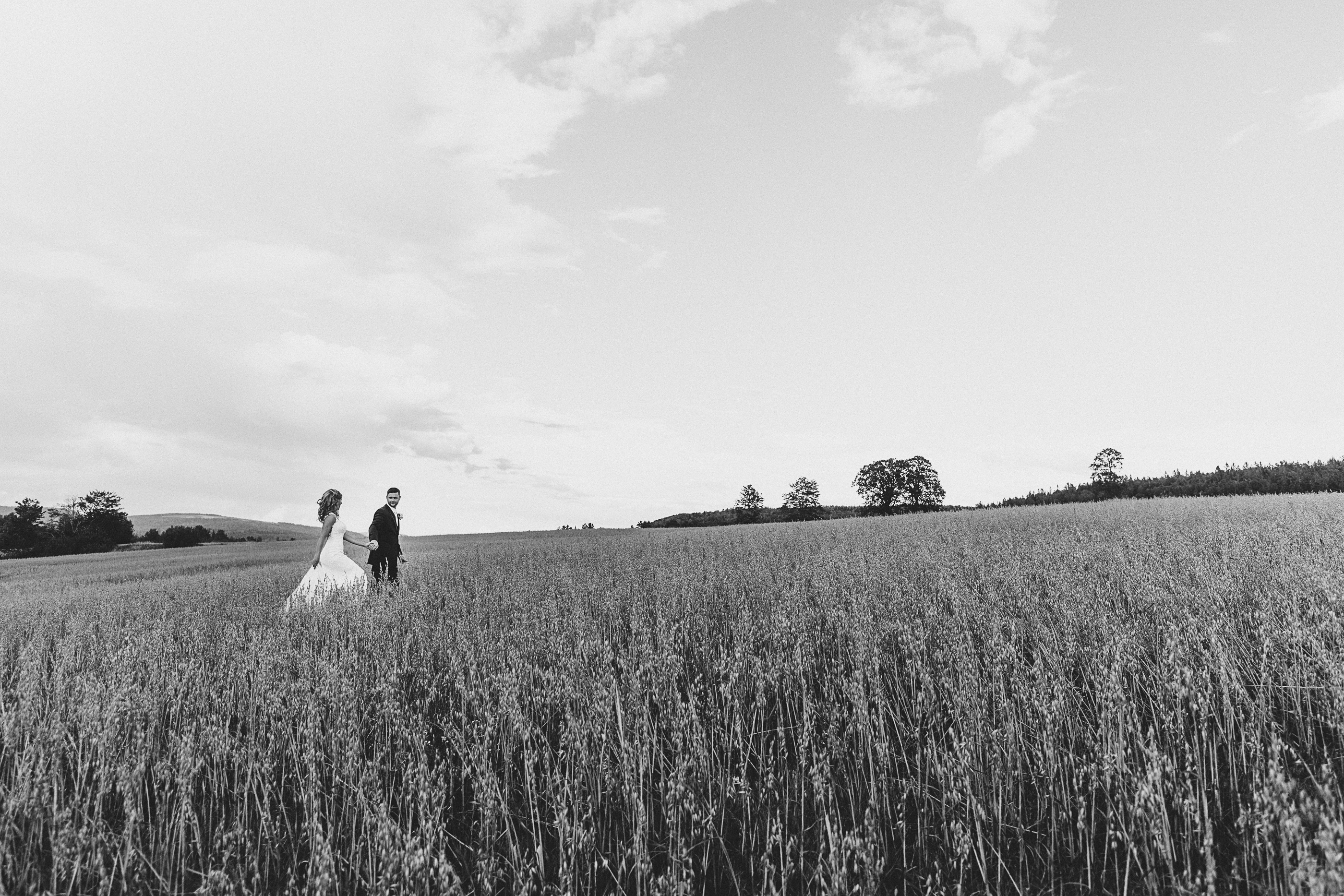 New Brunswick wedding photographer takes amazing shot in wheat field