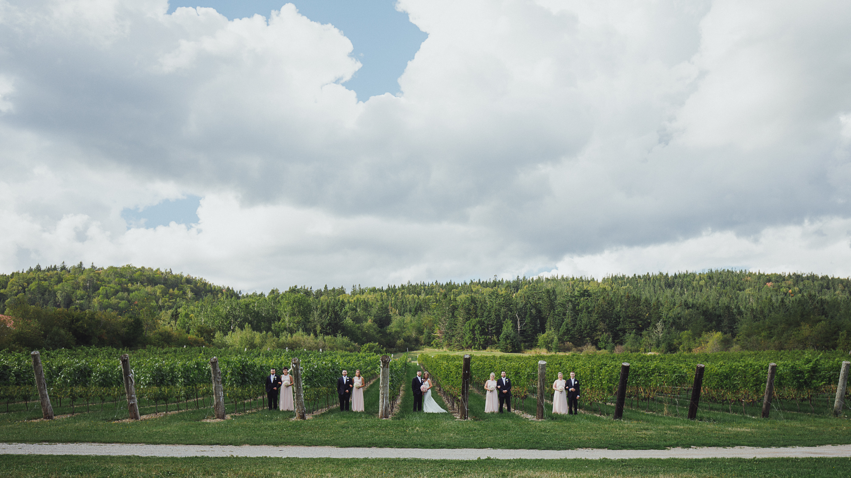 Wedding photos at the vineyward - Belleisle New Brunswick