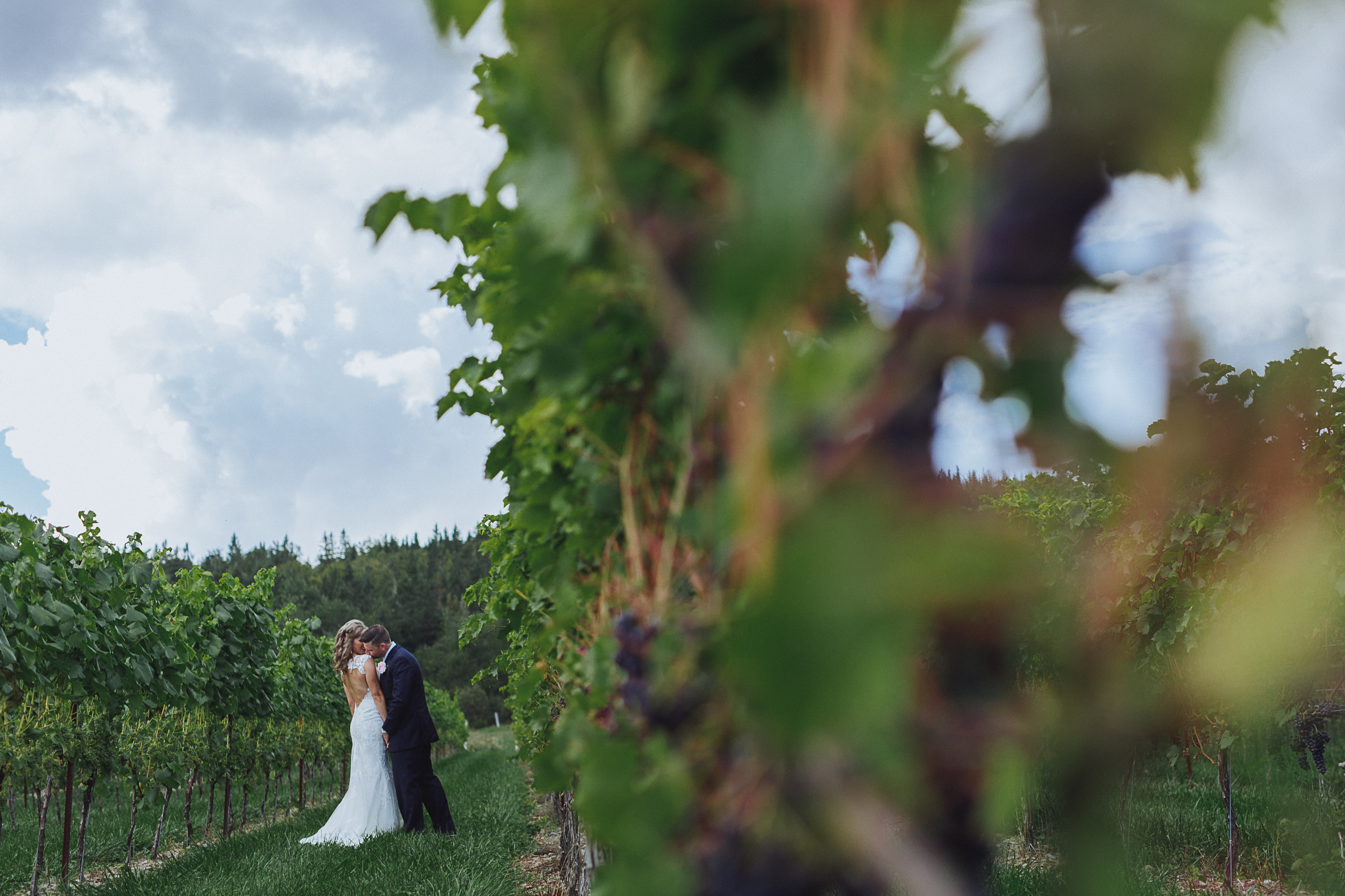 Gillis of Belleisle Winery - wedding