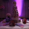 Jana-Cody-Wedding-2012-767