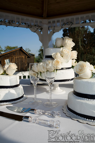 H_Rocha Wedding0342