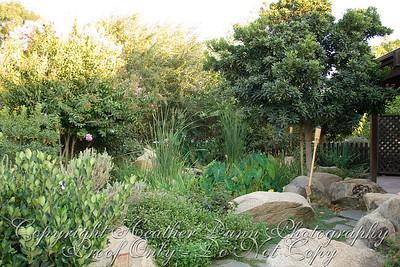 additional shot of pond/path