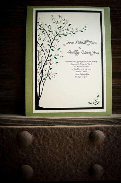 Joanne & Anthony | Wedding