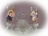 P7020140 3 copy