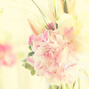 JenO'S_CharityShoot_May11_018