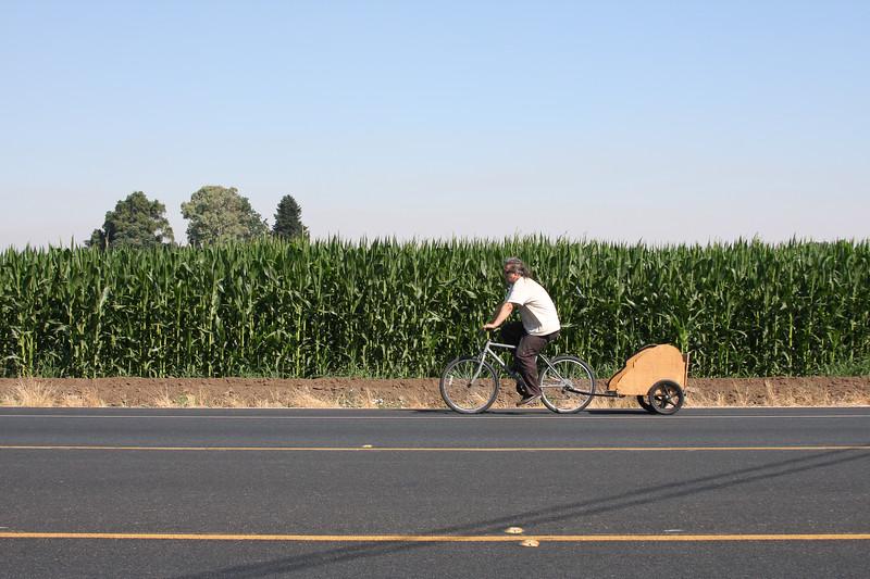 A man on a bike towing a little trailer behind him