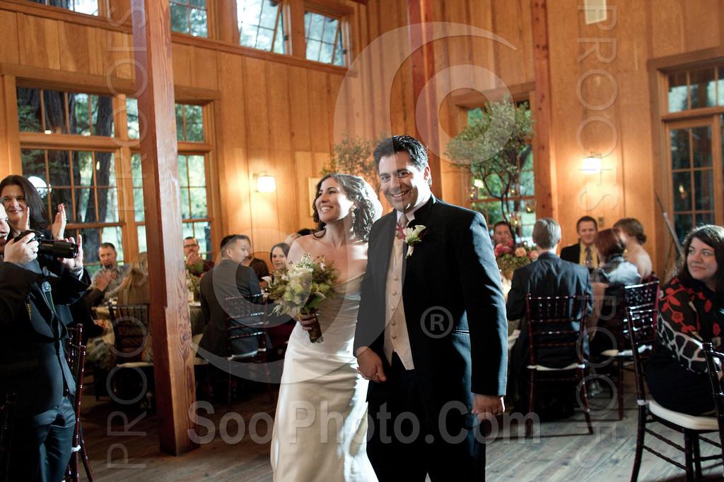 nestldown-los-gatos-wedding_4563