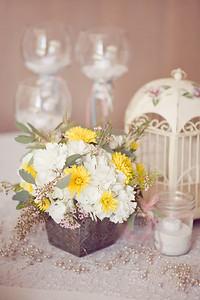 2012_SpringWedding_Isham_JanaMariePhotography-0005